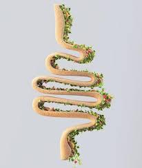 intestino-fermenti