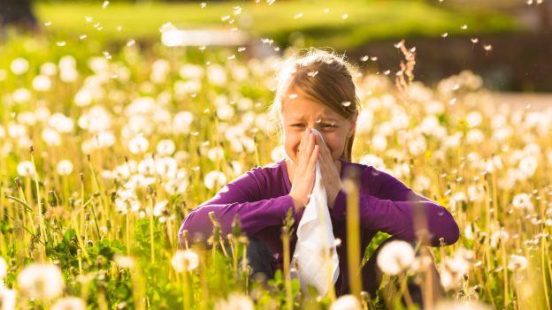 tosse allergica in primavera