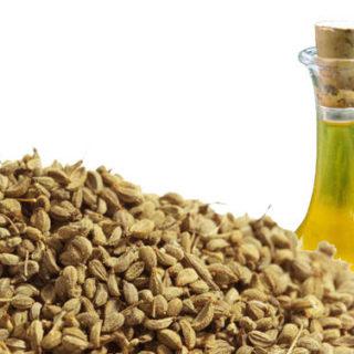 olio essenziale ajowan