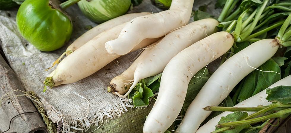 Daikon, le proprietà della radice bianca più famosa dell'Asia
