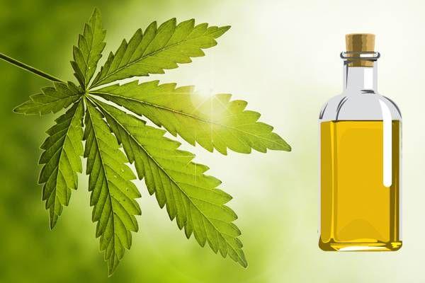 Olio di neem, repellente per animali, piante e uomo