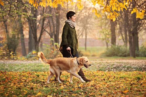 Passeggiare con il cane fa bene alla salute