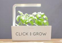 Orto da appartamento, Click & Grow