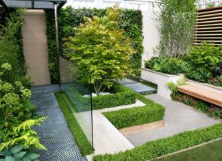 Piante e aree verdi nelle case e in città, bonus