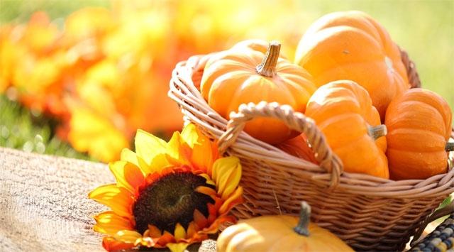Zucca, alimento ano dell'autunno