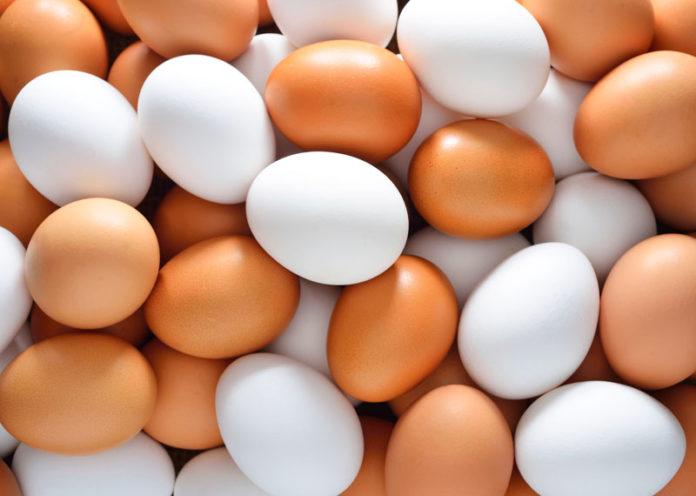 dieta uovo sodo 15 giorni