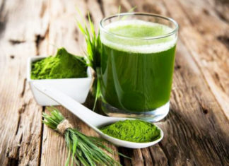 moringa superfood
