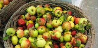 mele antiche