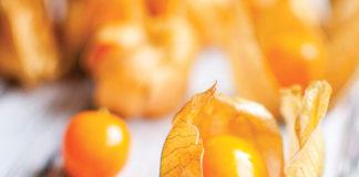 Alchechengi, un frutto eccellente da usare in ricette dolci e salate