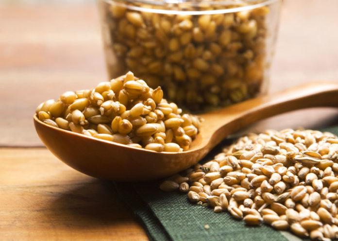 Germe di grano, il cuore super-benefico ed energizzante del cereale