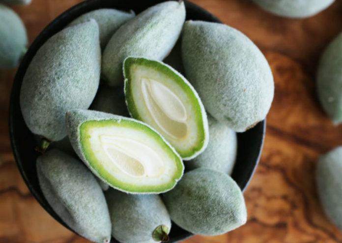 Mandorle verdi: ecco i benefici che apportano al nostro organismo
