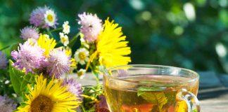4 tisane depuranti ai fiori ed erbe di primavera