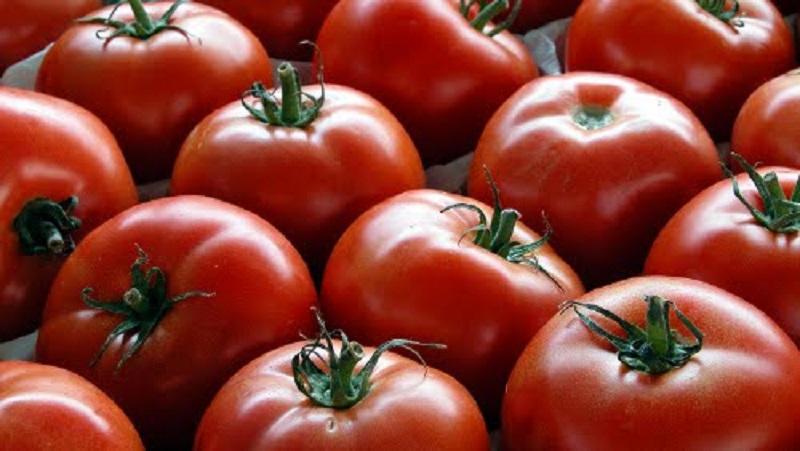 pomodoro salutare per l'organismo