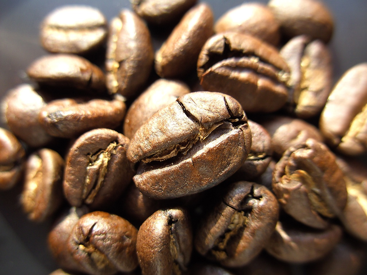 caffè tiene lontane api e vespe