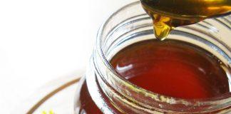 "Miele vegano al tarassaco ""fai da te"" (senza l'impiego delle api)"