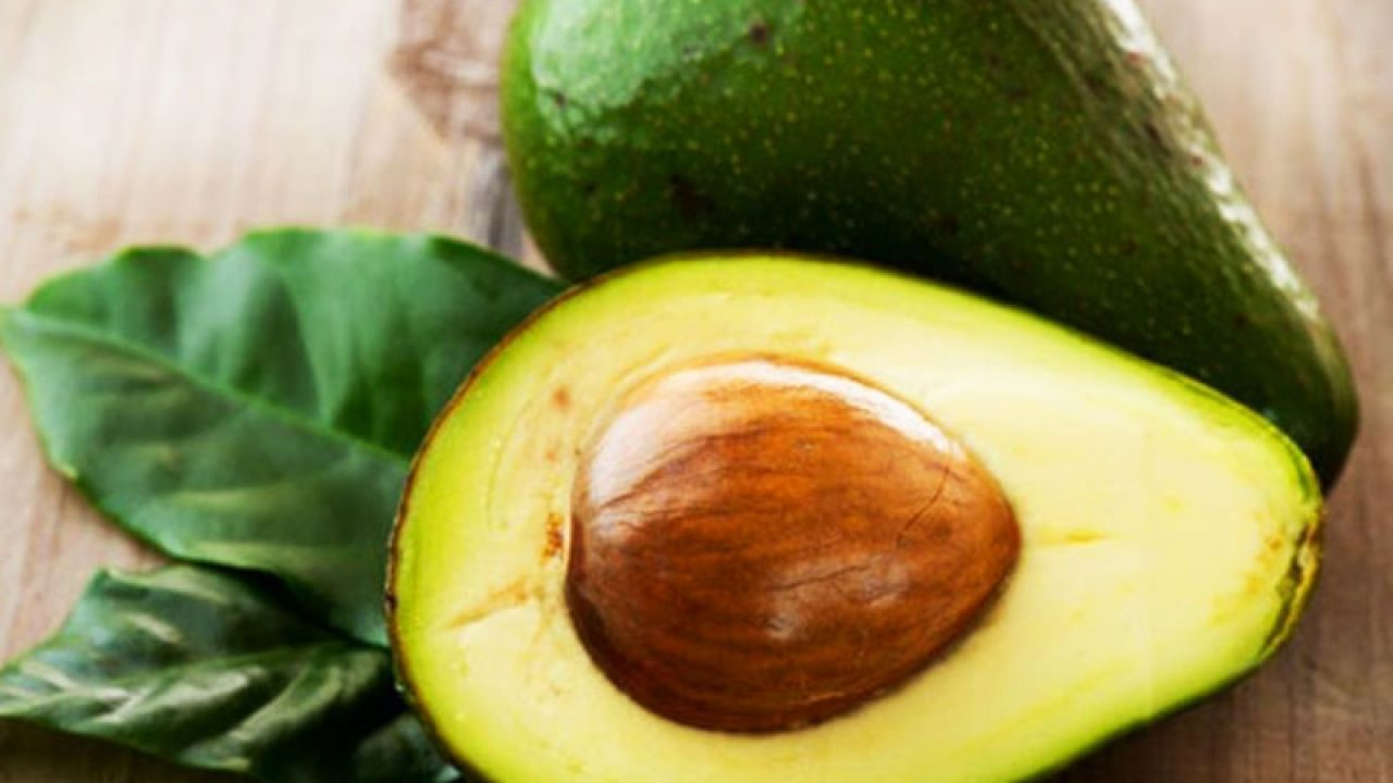 Nocciolo Di Avocado In Acqua seme di avocado: come piantarlo e come utilizzarlo in cucina