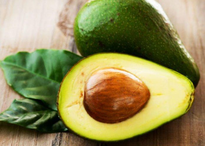 Seme di avocado: come piantarlo e come utilizzarlo in cucina