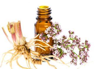 Valeriana, un potente rimedio naturale contro insonnia, ansia e stress