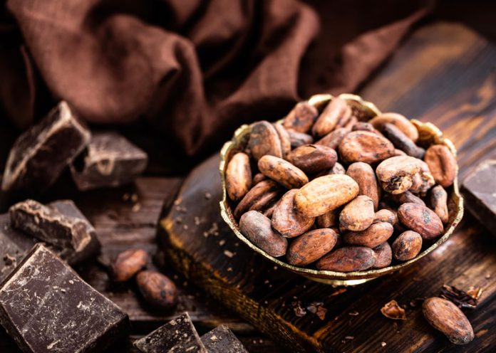 Cacao per incrementare l'assunzione di vitamina D (soprattutto in inverno)