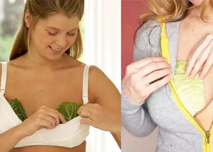 2 foglie di cavolo nel reggiseno? Un rimedio naturale incredibile!