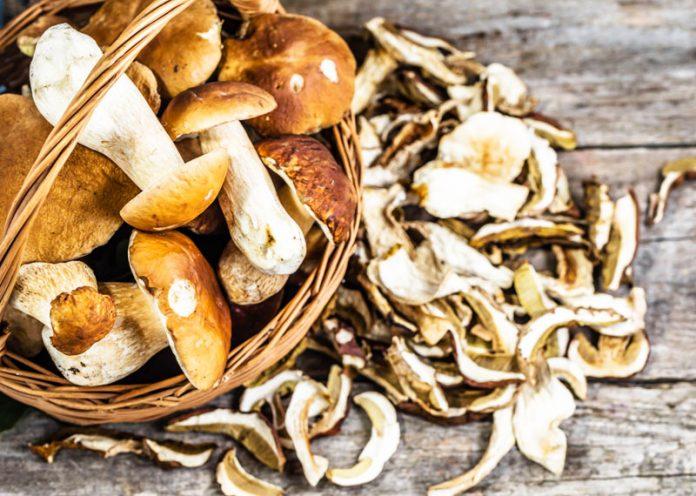 funghi porcini e selenio