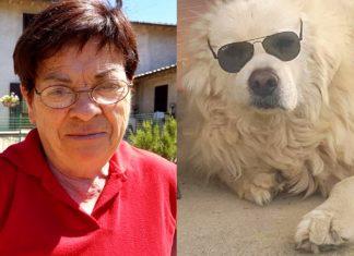Cane muore di dolore dopo la scomparsa della sua padrona