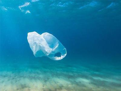 supermercato plastic free per ridurre l'inquinamento da plastica