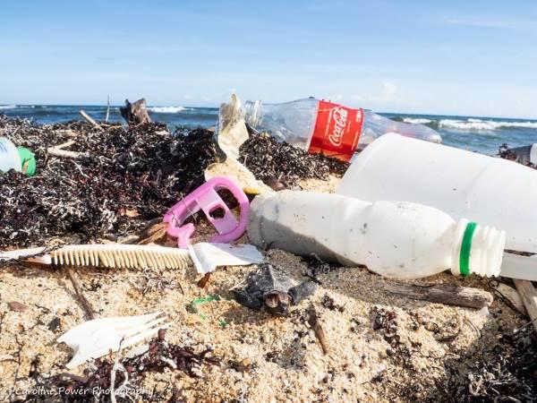 plastica al posto della barriera corallina