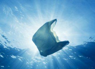 Supermercati senza plastica per salvare l'ambiente