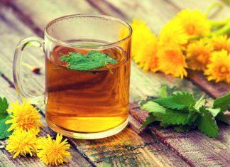 Tarassaco, pianta benefica per il fegato (come usarla e controindicazioni)