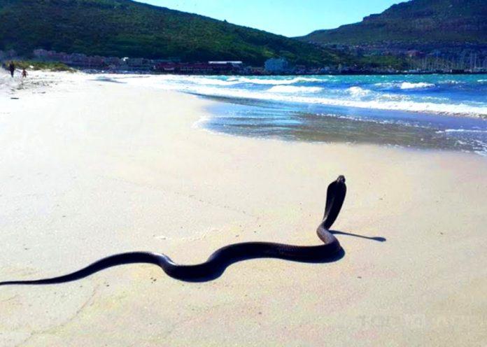 Le 5 spiagge più pericolose del mondo