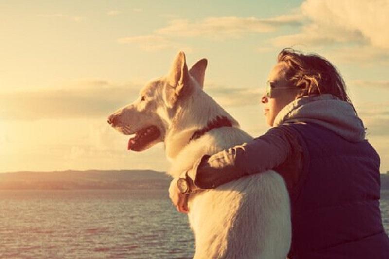 Amore verso il proprio cane dipende dall'ossiticina