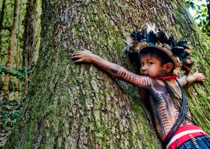 Amazzonia, il progetto degli indigeni per salvare la foresta presentato all'Onu
