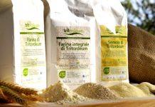 Tritordeum, 3 ricette con il cereale del futuro