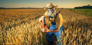La pasta fa male? Tutta colpa del grano (importato) contaminato da pesticidi