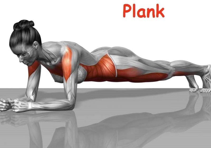 plank, esercizio fisico
