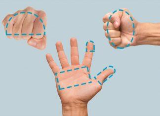 Addio bilancia: ecco come misurare le porzioni con il palmo della mano