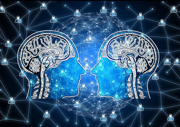 cervello di uomo e donna a confronto