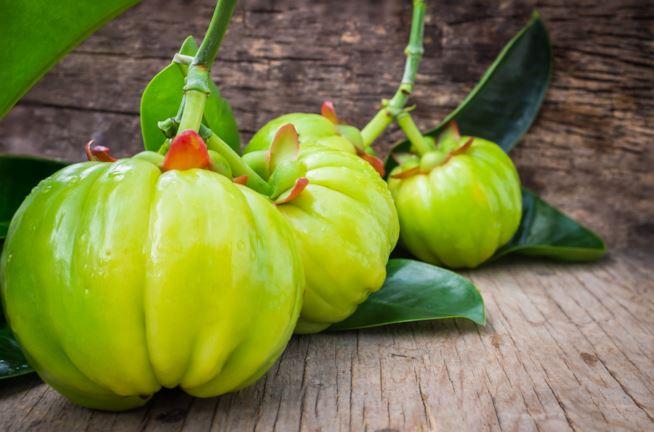 garcina cambogia frutto
