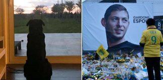 Il cane di Emiliano Sala lo sta ancora aspettando sull'uscio di casa