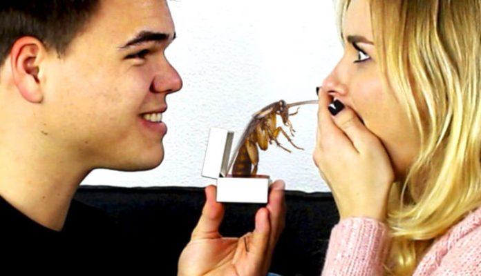 Uno scarafaggio col nome del partner per San Valentino