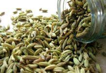 Tisana semi di finocchio per pancia piatta