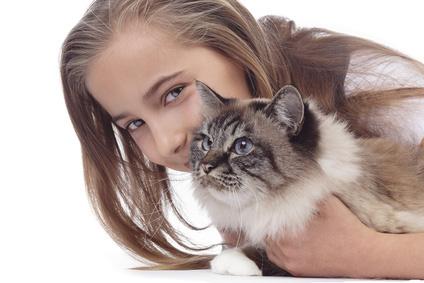 gatto aggressivo contro i padroni