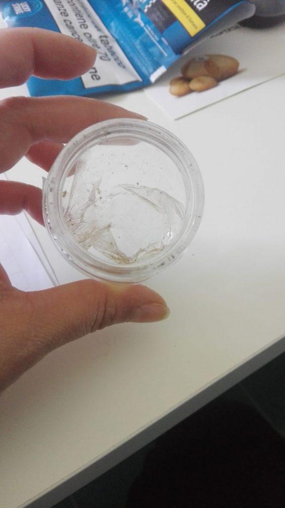 plastica ingerita dalla tartaruga